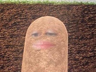Boss spends online meeting as a potato after triggering camera filter
