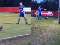 Dog gives footballers the runaround in seven-goal non-league classic