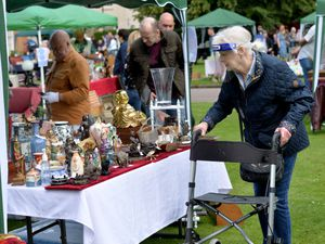 Browsing with protection at the Antique and Collectors Fair