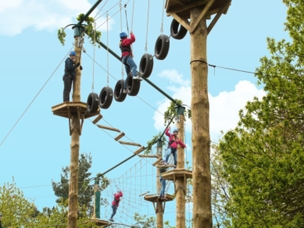 Tree Top Quest returns to Alton Towers