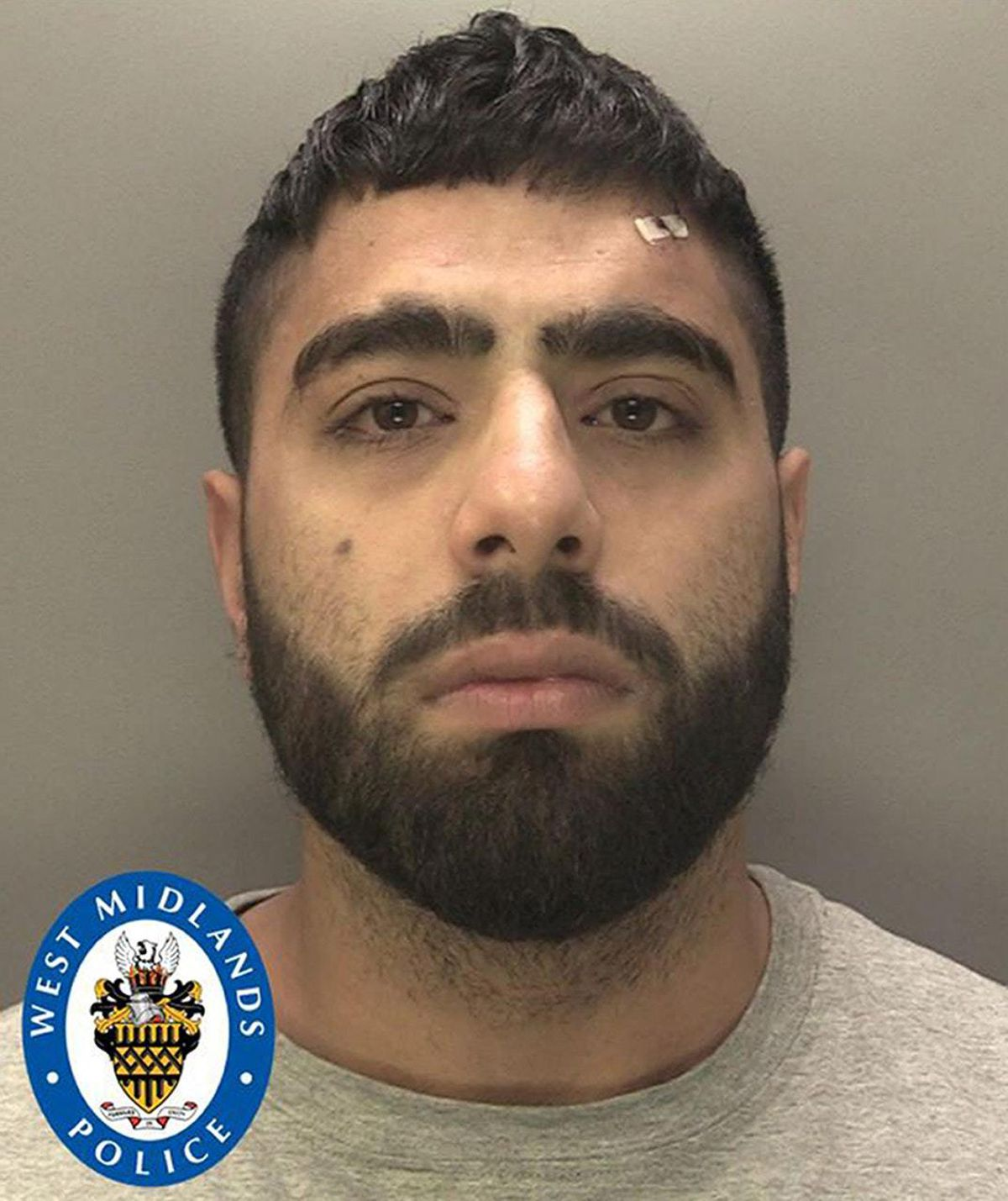 Ahsan Ghafoor admitted two counts of car theft