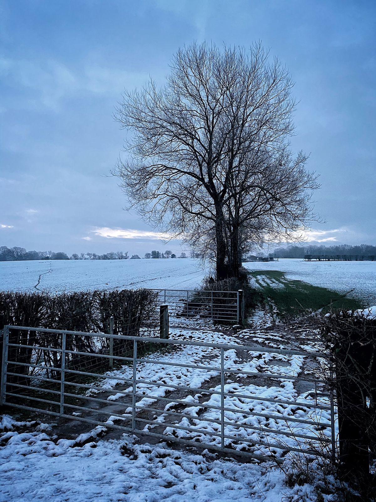 Alverley, near Bridgnorth. Pic:Jim Harrison.