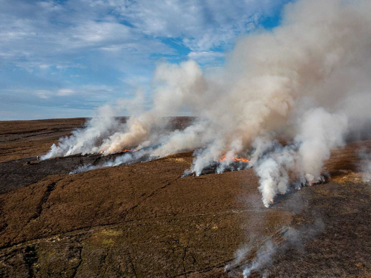 Heather is set alight on peatlands in the North York Moors National Park for grouse-shooting.