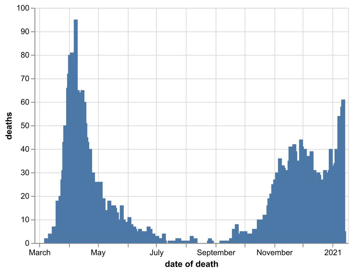 The daily number of coronavirus deaths at Black Country, Birmingham and Staffordshire hospitals as of January 14. By date of death, not date death was announced. Data: NHS England.