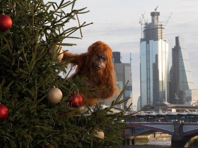 Orangutan takes to London streets after Iceland Christmas ad banned