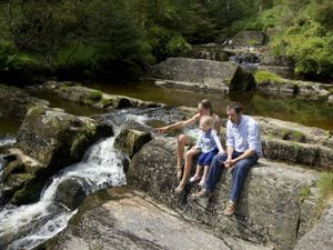 One of the waterfall walks to be found in the beautiful Hafren Forest, near Llanidloes
