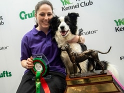 It's a dog's life for Staffordshire woman following Crufts award win