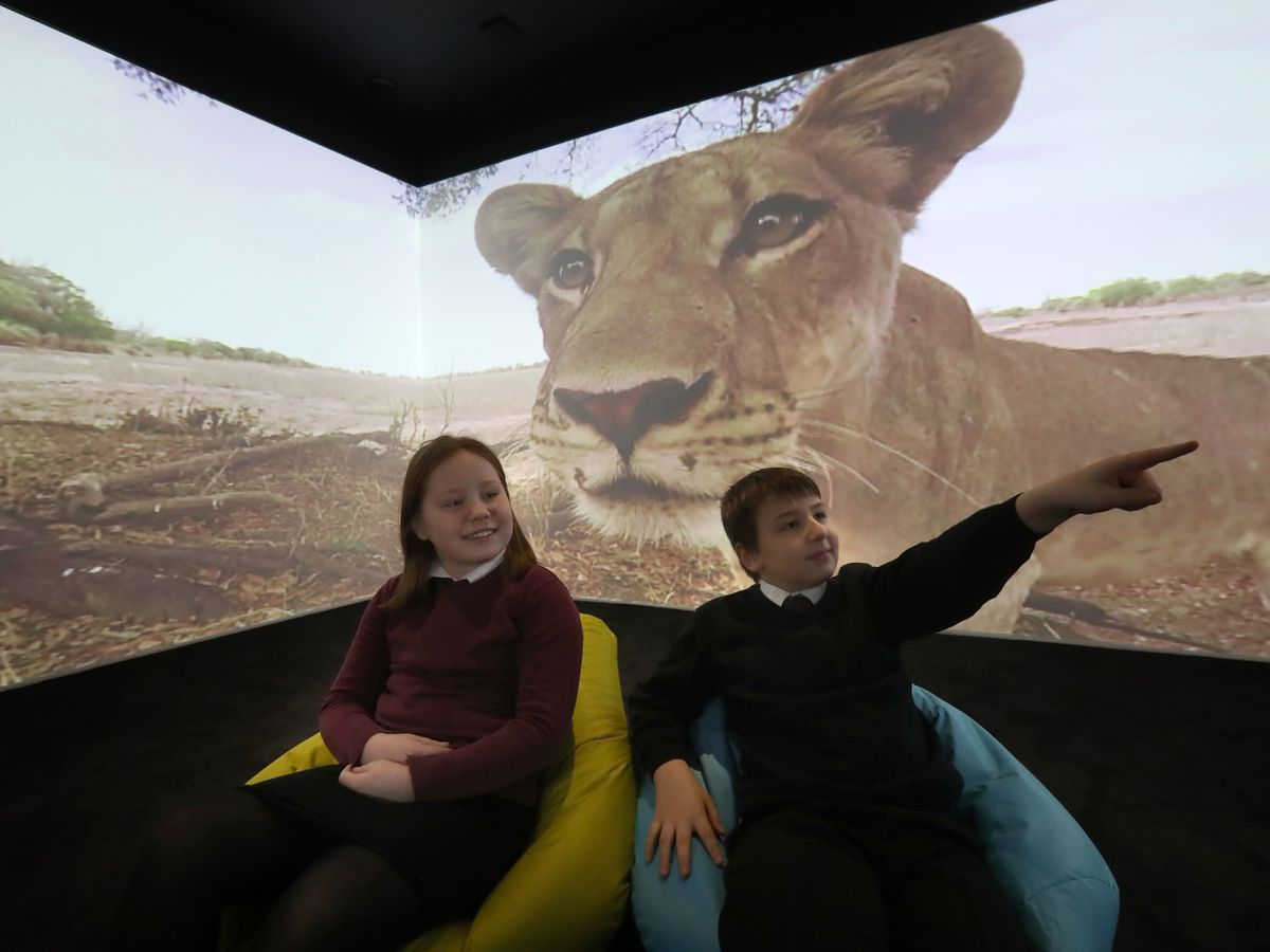 Children in the immersive classroom  - GPG2A26ZRVAKLMNNQ53SCMYLQ4 - Pupils experience life under the ocean and in outer space in immersive classroom
