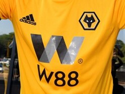 Wolves demand High Court throw out wolf logo copyright claim