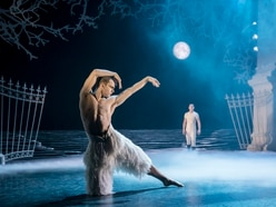 Matthew Bourne's Swan Lake, Birmingham Hippodrome - review