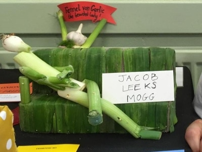 Jacob Leeks Mogg: Vegetable depiction of MP comes second at onion show