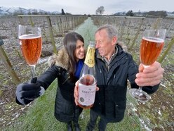 Enjoy lovely bubbly! Why sales of sparkling Shropshire wine are booming