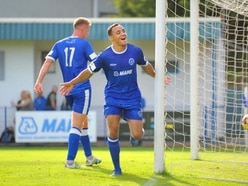 Halesowen Town 7 Lichfield City 1 - Report and pictures