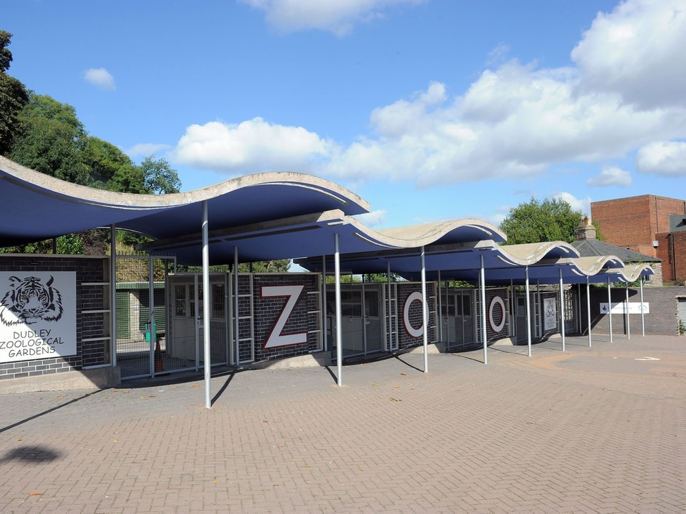 Dudley Zoo launches fundraising appeal after closing over coronavirus