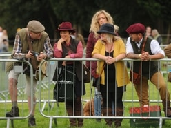 Country life celebrated at Midland Game Fair - video and pictures