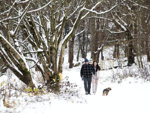 Couple walk their dog in the snow