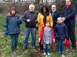 Newly-planted trees to blossom in Tettenhall as part of royal project
