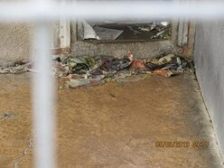 Owners of 'filthy' kennels are fined £5,000
