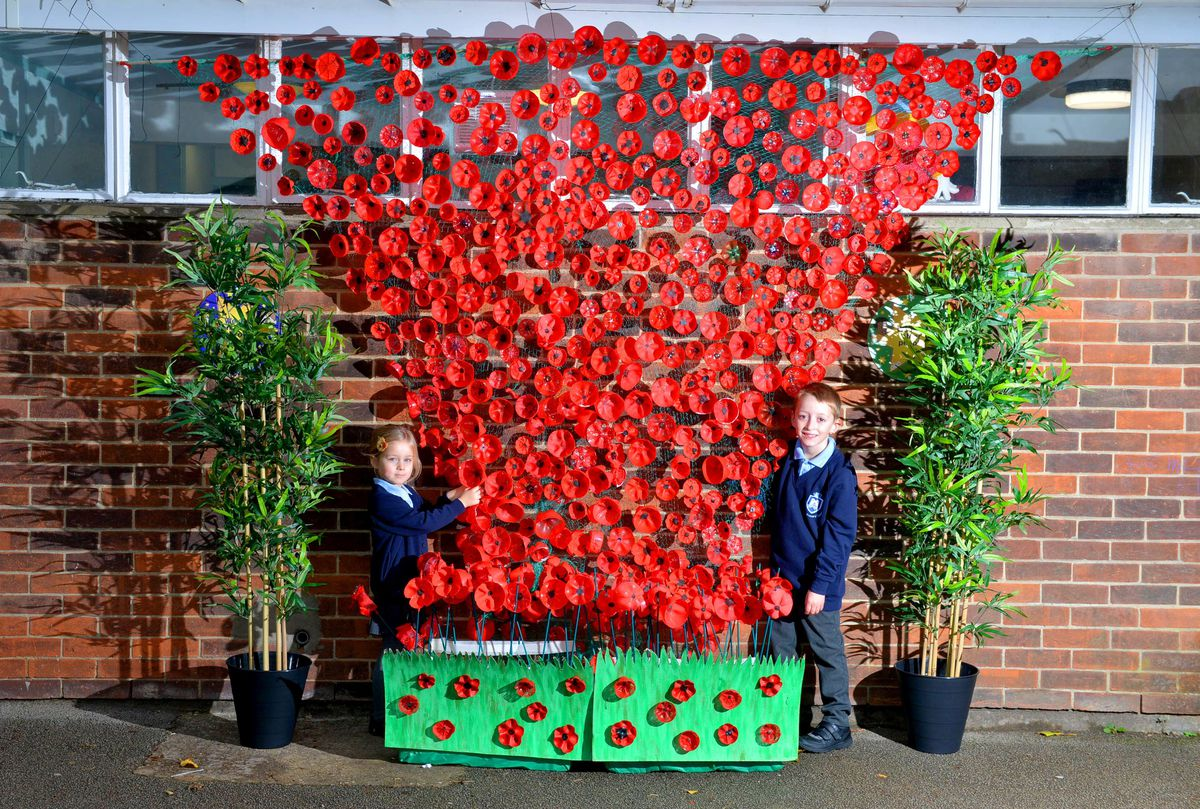 Pupils at Bramford Primary School in Coseley have used plastic bottles to create a poppy cascade tribute. Lola Lister, four, and Isaac Lane, seven, with the tribute