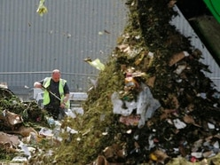 Councils rake in millions from garden waste collections