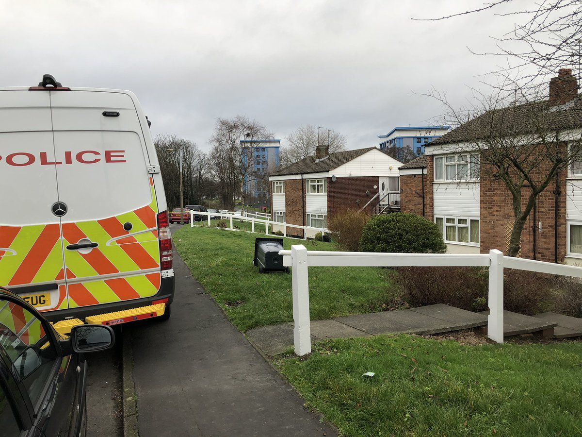 A police investigation has been launched