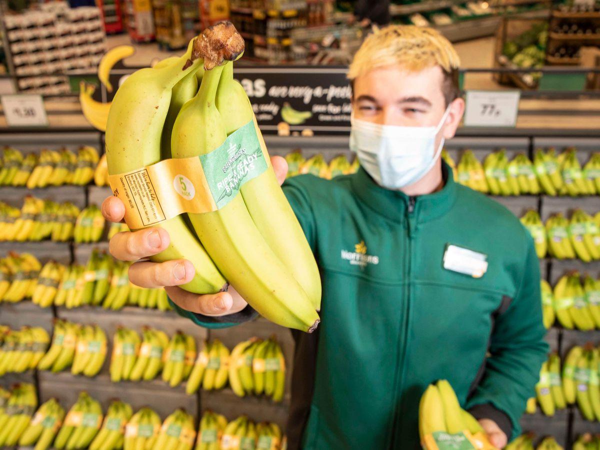 Morrisons bananas