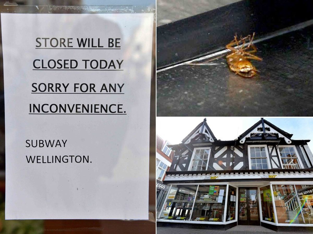Subway, in Wellington, was closed because of a cockroach infestation