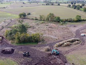 Little Lyntus Wood, near Lichfield, has been decimated to make way for HS2