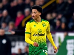 Jamal Lewis strike gives Norwich vital victory over Leicester