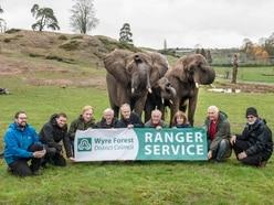 Green-fingered volunteers feed West Midland Safari Park elephants