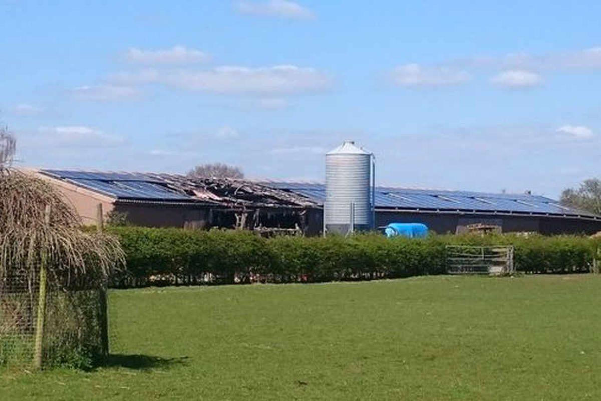 Firefighters battle farm blaze in Stafford