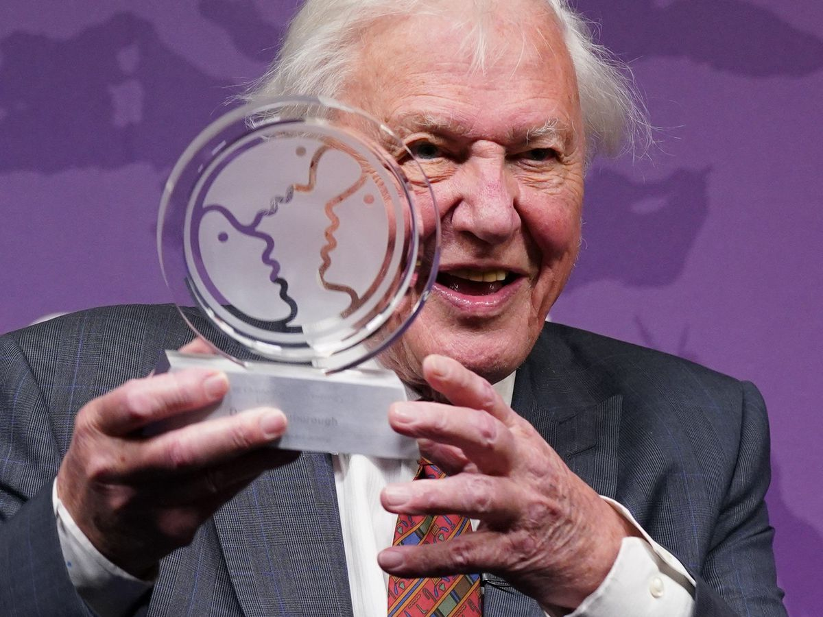 Sir David Attenborough is presented with a Chatham House Centenary Lifetime Award during an event to celebrate his work and achievements at Chatham House in London (Yui Mok/PA)