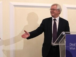 David Davis calls for 'smooth' exit from EU – then trips as he exits stage