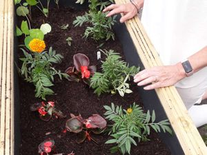 Women at the refuge helped plant the flowers