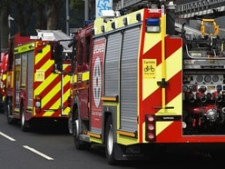 Firefighters free dog hit by car near Stafford