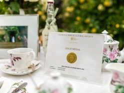 Gold medal for David Austin Roses at RHS Chelsea Flower Show