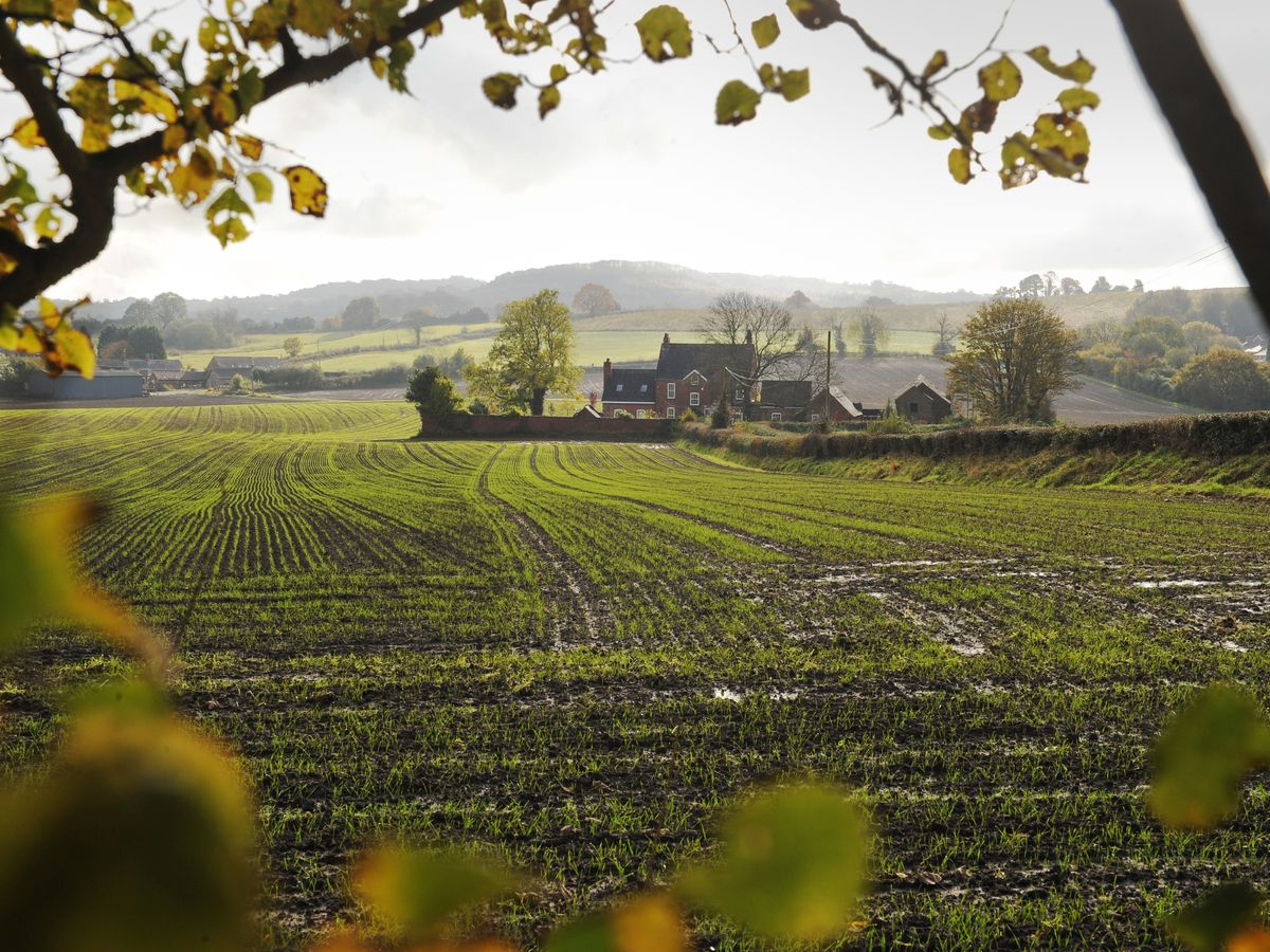 Land around Foxcote Farm could be transformed for new homes