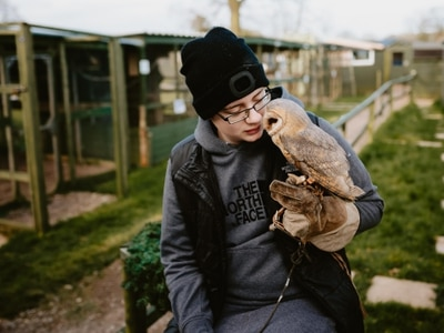 Owl sanctuary launches desperate fundraising bid to stay open