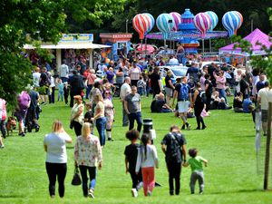 People flocked to the 51st Wednesbury Carnival in Brunswick Park on Saturday