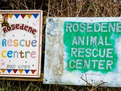 Walsall Council: Rosedene Rescue Centre only needed a 'pet shop' licence