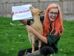 April and Millie delighted Sandwell family farm is back open
