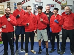 Lions Boxing Club are ready to roar