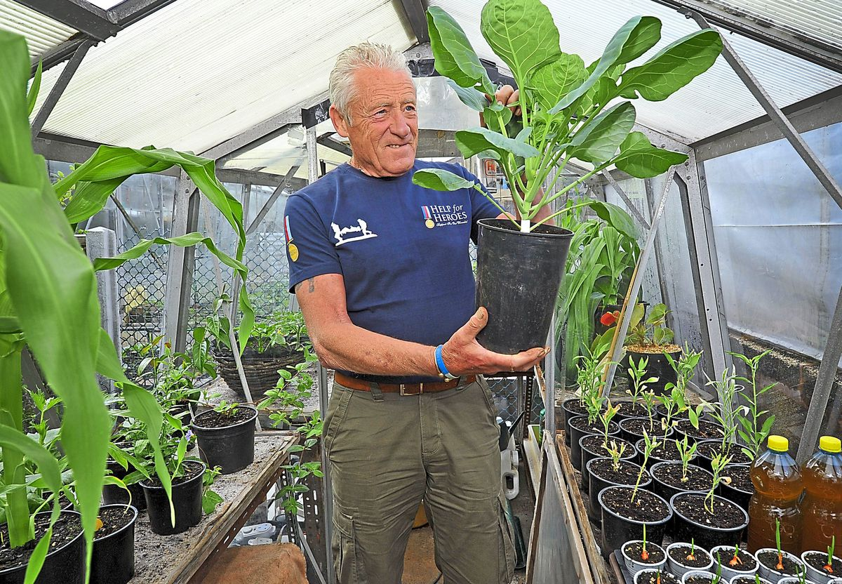 Mick Poultney gets busy in his greenhouse