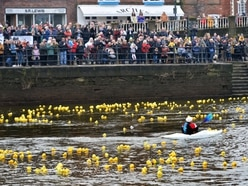 Quackers! Thousands turn out for Bewdley duck race - with pictures