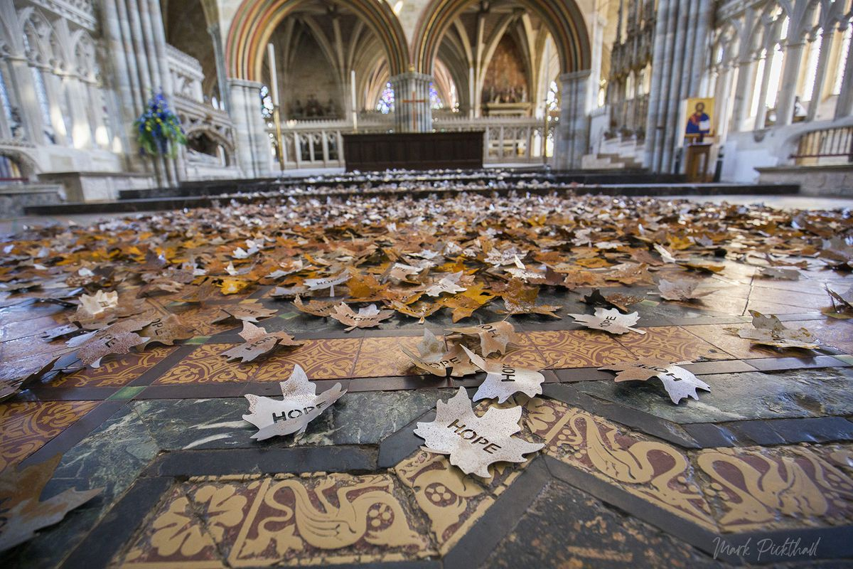 The display will represent an autumn scene on the floor of the cathedral