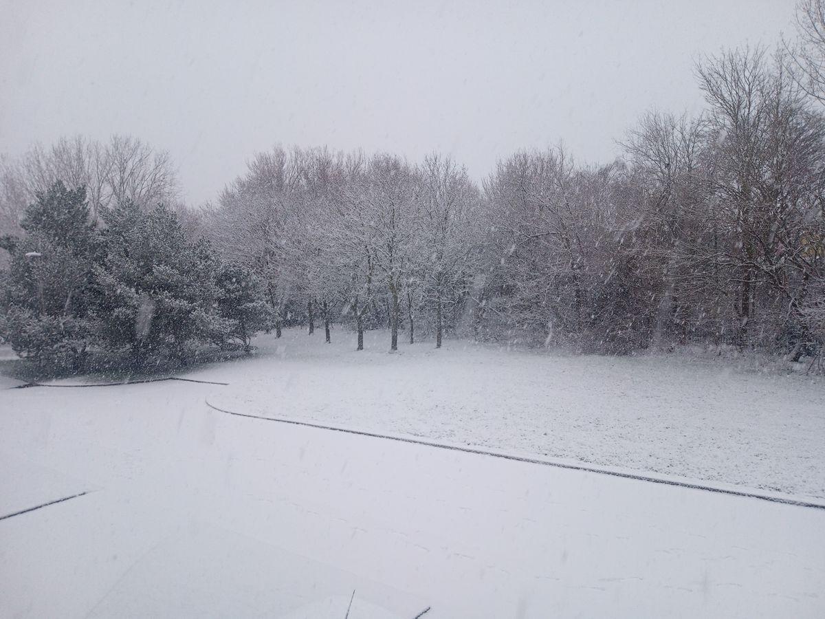 Snow in Kingswinford. Photo: Brett Groom