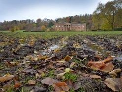 Himley Hall grounds 'wrecked' after fireworks event