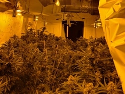 Cannabis plants seized after raid on Great Barr house