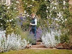 'There is always something new to see': Behind the scenes at Dorothy Clive Gardens