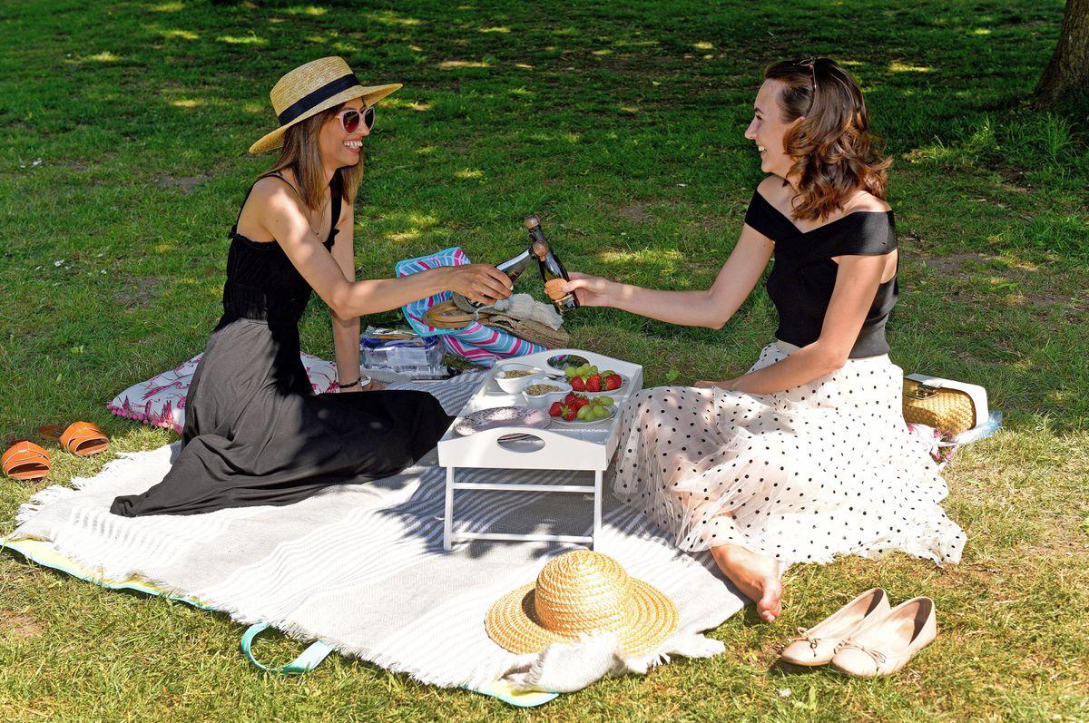 Two friends enjoy a picnic